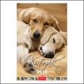 Kutyák falinaptár